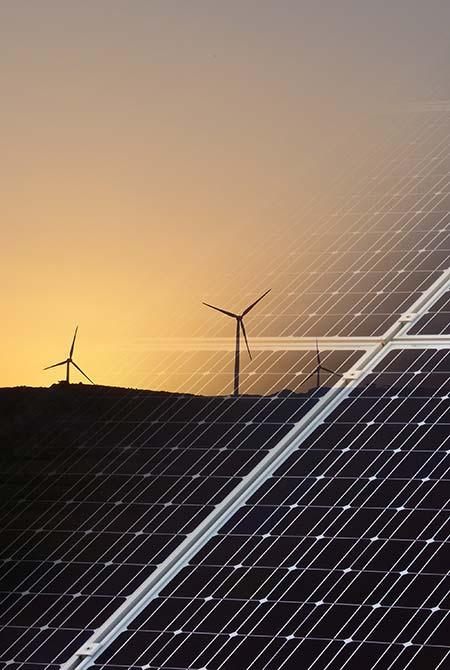 Renewables FBR Seed